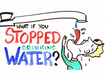 VIDEO: What if you stopped drinking water?